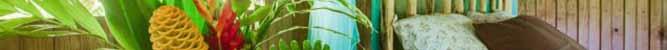 Martz Farm Treehouses & Cabanas