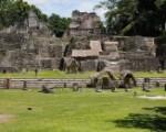 Tikal_Plaze-180×130